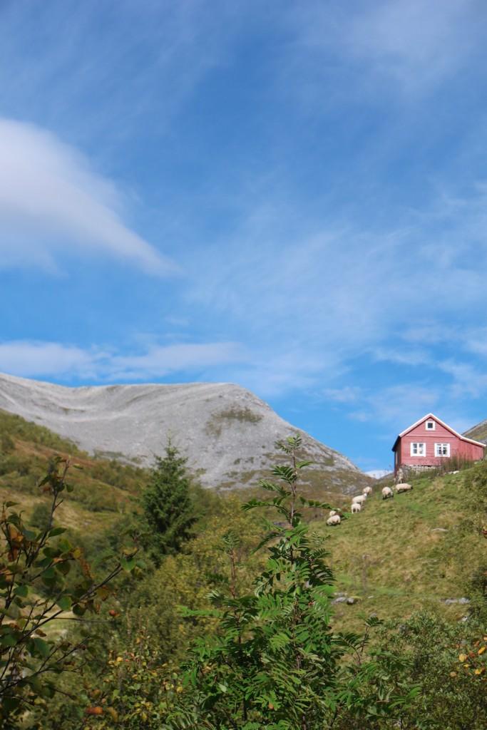 Romsdal Yoga