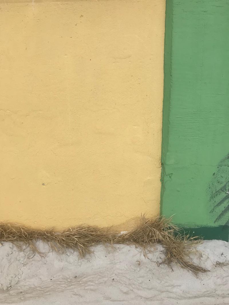 Fargerike Florida